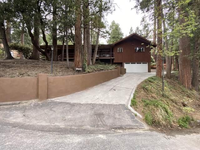 53678 Silver Fir Drive, Idyllwild, CA 92549 (MLS #219062841) :: Hacienda Agency Inc