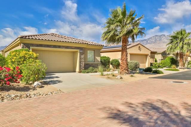 67485 Lakota Court, Cathedral City, CA 92234 (MLS #219063061) :: Brad Schmett Real Estate Group