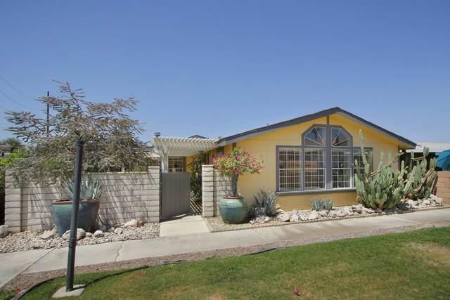 81641 Avenue 48 #16, Indio, CA 92201 (MLS #219063484) :: Brad Schmett Real Estate Group