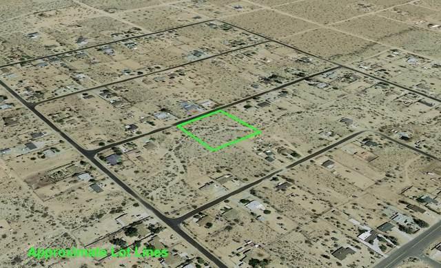205 Sun Mesa Drive, Yucca Valley, CA 92284 (MLS #219063578) :: Hacienda Agency Inc