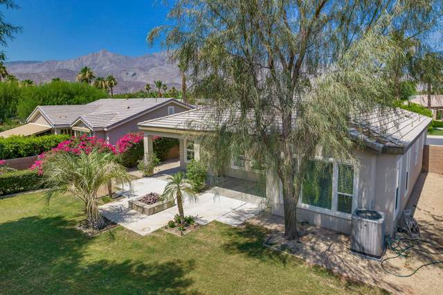61320 Cactus Spring Drive, La Quinta, CA 92253 (MLS #219063605) :: The Jelmberg Team