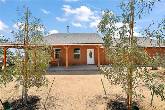 60538 Drexel Road, Joshua Tree, CA 92252 (MLS #219063662) :: Hacienda Agency Inc