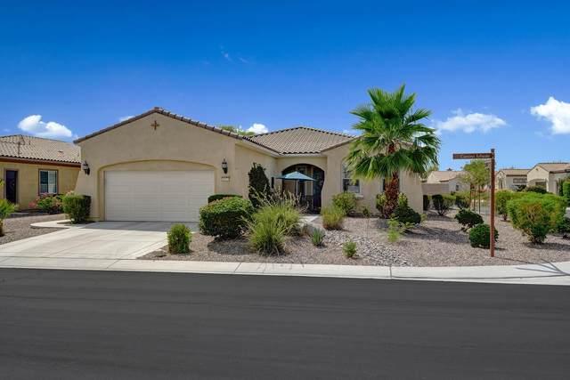 39575 Camino Arbusto, Indio, CA 92203 (MLS #219063682) :: Brad Schmett Real Estate Group