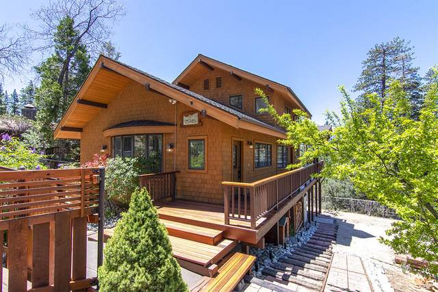 25145 Cougar Road, Idyllwild, CA 92549 (MLS #219063685) :: Hacienda Agency Inc
