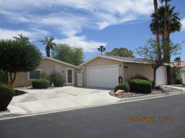 34542 Stage Drive, Thousand Palms, CA 92276 (MLS #219063739) :: Lisa Angell