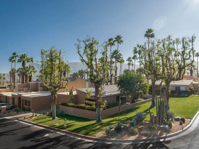 73401 Dalea Lane, Palm Desert, CA 92260 (MLS #219063748) :: Hacienda Agency Inc
