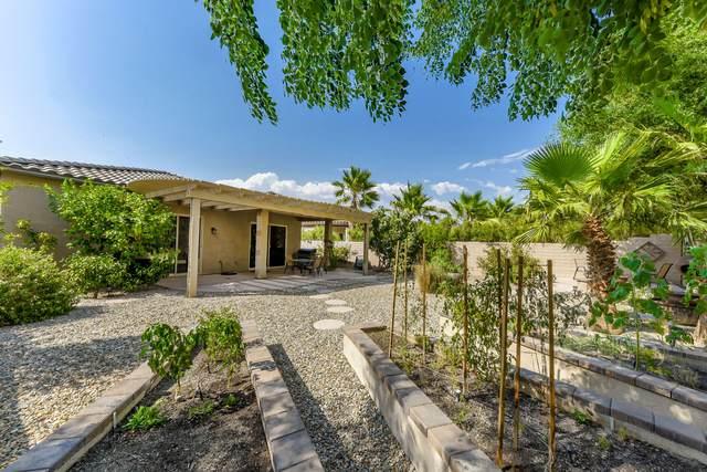 39220 Calle Negrete, Indio, CA 92203 (MLS #219063783) :: Hacienda Agency Inc