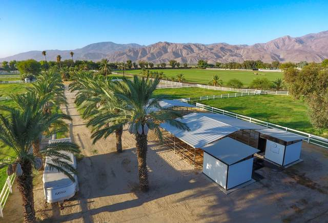 61641 Sabina Street, Thermal, CA 92274 (MLS #219063813) :: Mark Wise | Bennion Deville Homes