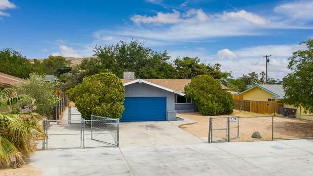 61878 Oleander Drive, Joshua Tree, CA 92252 (MLS #219063908) :: The Jelmberg Team