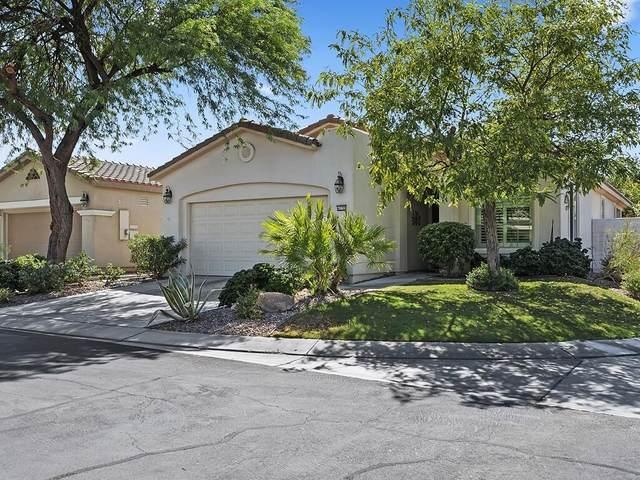 40799 Calle Santa Cruz, Indio, CA 92203 (MLS #219064225) :: Brad Schmett Real Estate Group