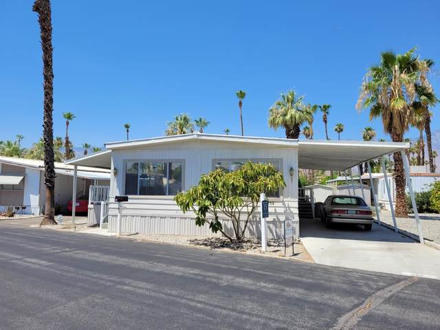 252 Standing Bear, Cathedral City, CA 92234 (MLS #219064404) :: Brad Schmett Real Estate Group