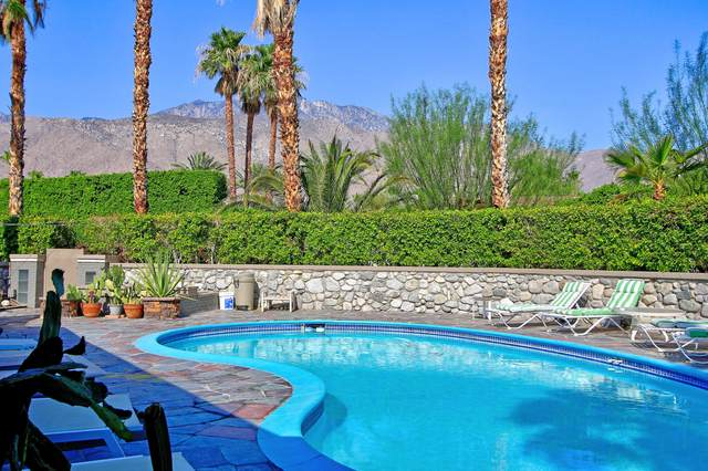1392 N Paseo De Anza, Palm Springs, CA 92262 (MLS #219064602) :: Brad Schmett Real Estate Group