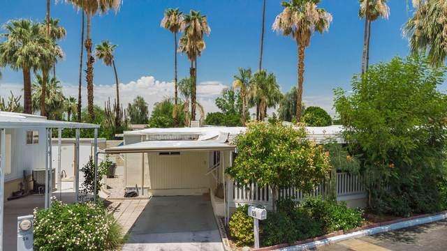 70260 Highway 111 #55, Rancho Mirage, CA 92270 (MLS #219064745) :: Brad Schmett Real Estate Group