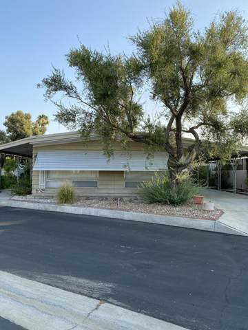147 Sage Drive, Palm Springs, CA 92264 (MLS #219064938) :: Brad Schmett Real Estate Group