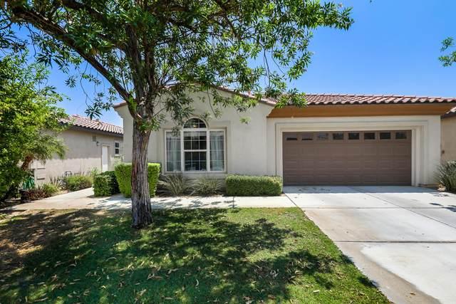 49628 Minelli Street, Indio, CA 92201 (MLS #219064976) :: Brad Schmett Real Estate Group