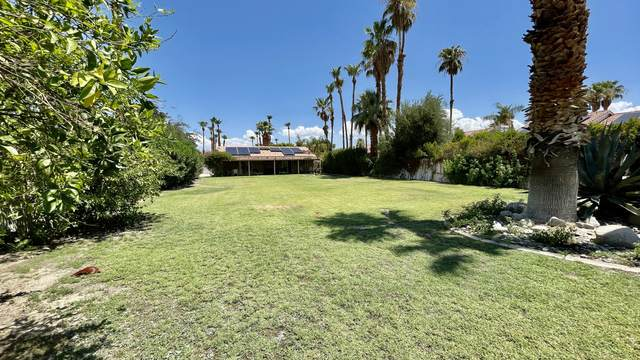 68645 Tachevah Drive, Cathedral City, CA 92234 (MLS #219065109) :: The John Jay Group - Bennion Deville Homes