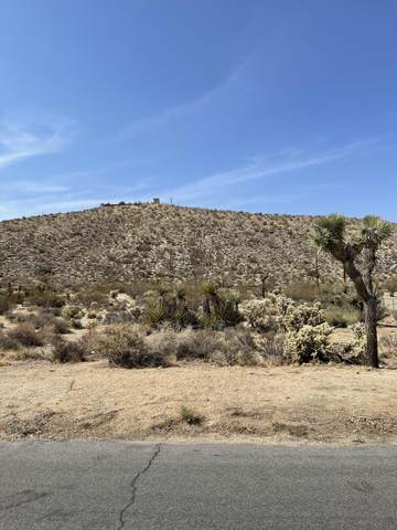 0 Carlyle Drive, Yucca Valley, CA 92284 (MLS #219065290) :: KUD Properties