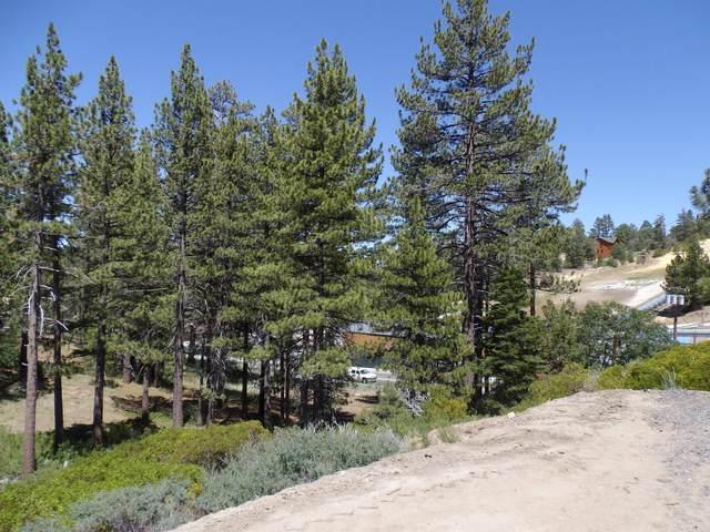 751 Talmadge Road, Big Bear Lake, CA 92315 (MLS #219065330) :: KUD Properties