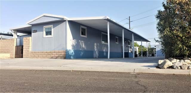73081 Broadmoor Drive, Thousand Palms, CA 92276 (MLS #219065333) :: The Sandi Phillips Team