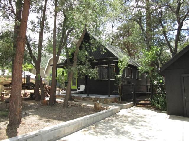 788 Sunset Lane, Sugarloaf, CA 92386 (MLS #219065343) :: KUD Properties