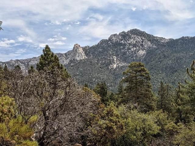 0 Rockdale Spur, Idyllwild, CA 92549 (MLS #219065420) :: KUD Properties