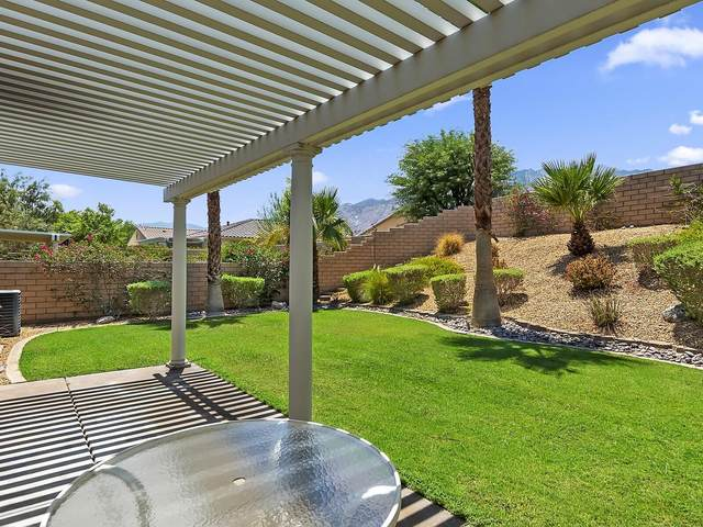 3555 Cliffrose Trail, Palm Springs, CA 92262 (MLS #219065442) :: Zwemmer Realty Group
