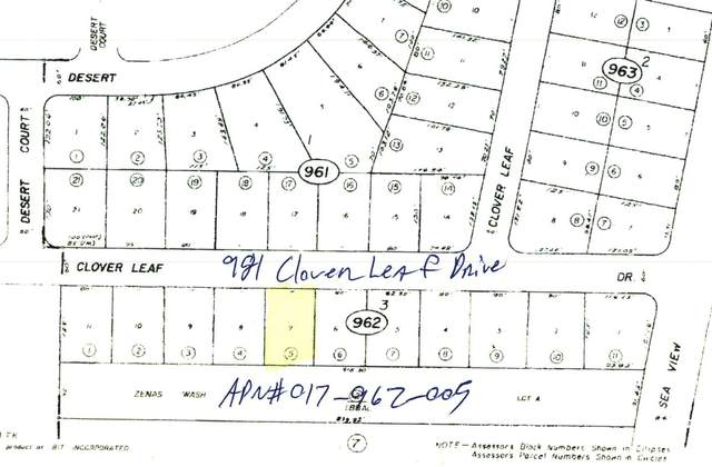 981 Clover Leaf Drive, Salton City, CA 92275 (#219065550) :: The Pratt Group
