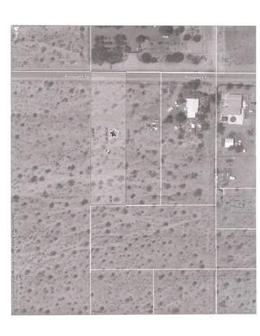 0 Prospect Street, Sky Valley, CA 92241 (MLS #219065745) :: Desert Area Homes For Sale