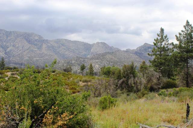 0 Bonita Vista Road, Mountain Center, CA 92561 (MLS #219066422) :: Mark Wise | Bennion Deville Homes