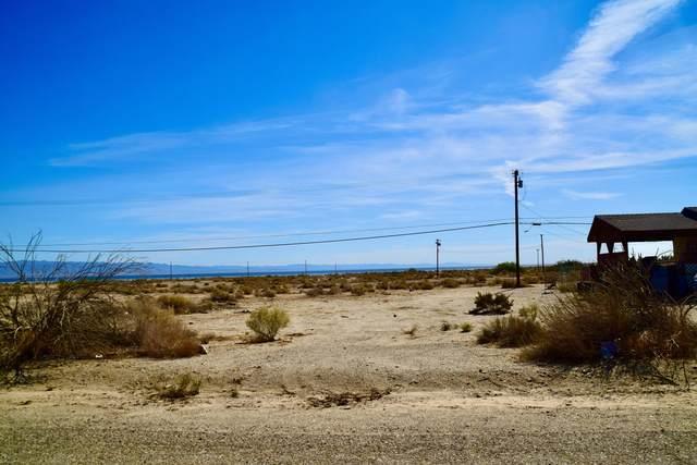 2572 S Marina Drive, Thermal, CA 92274 (MLS #219067202) :: Zwemmer Realty Group