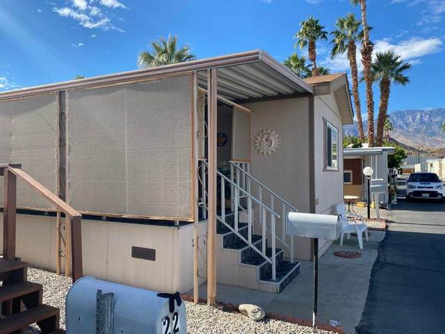 21 Roosevelt Drive, Cathedral City, CA 92234 (MLS #219067204) :: Zwemmer Realty Group