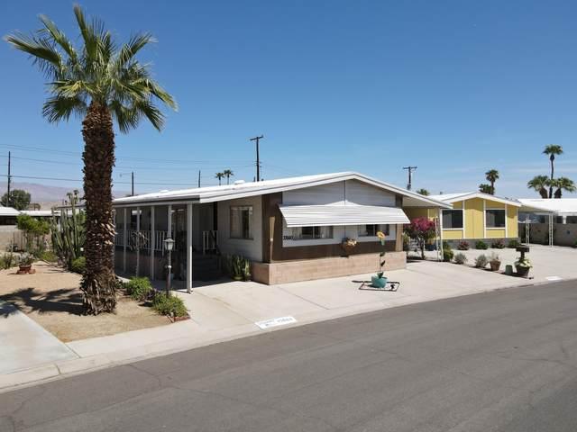 33660 Sundance Trail, Thousand Palms, CA 92276 (MLS #219067218) :: Mark Wise | Bennion Deville Homes