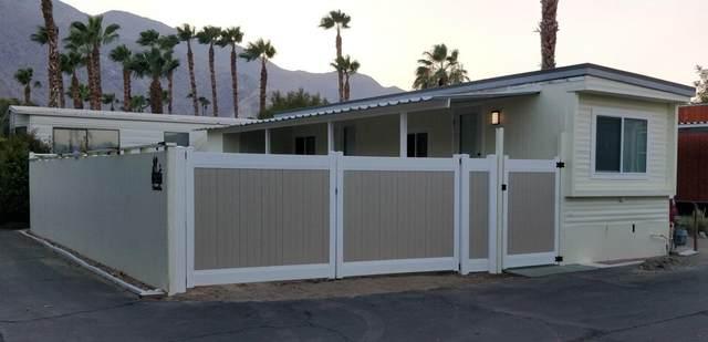 169a Hiawatha Street, Palm Springs, CA 92264 (MLS #219067626) :: Mark Wise | Bennion Deville Homes