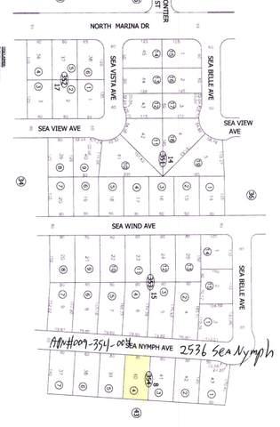 2536 Sea Nymph Avenue, Salton City, CA 92275 (MLS #219067705) :: The John Jay Group - Bennion Deville Homes
