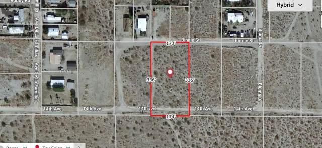 14th Ave - 1.1 Acres Vacant Lot, Desert Hot Springs, CA 92241 (MLS #219067780) :: Hacienda Agency Inc