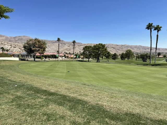 0 Turnesa Court, Desert Hot Springs, CA 92240 (MLS #219067828) :: Zwemmer Realty Group