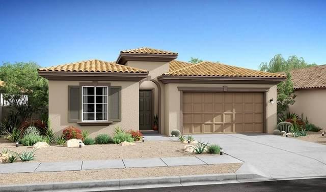 85557 Veneto Lane, Indio, CA 92203 (MLS #219067903) :: Mark Wise | Bennion Deville Homes