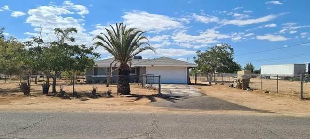 10396 5th Avenue, Hesperia, CA 92345 (MLS #219067961) :: Mark Wise | Bennion Deville Homes