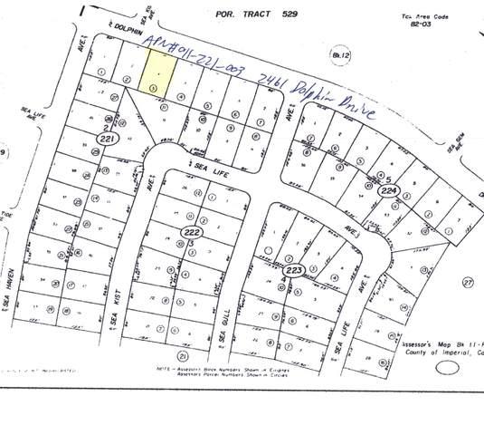 2461 Dolphin Drive, Salton City, CA 92275 (MLS #219068007) :: The John Jay Group - Bennion Deville Homes