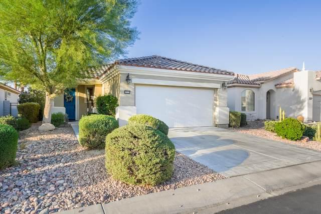 80528 Avenida Camarillo, Indio, CA 92203 (MLS #219068048) :: Brad Schmett Real Estate Group