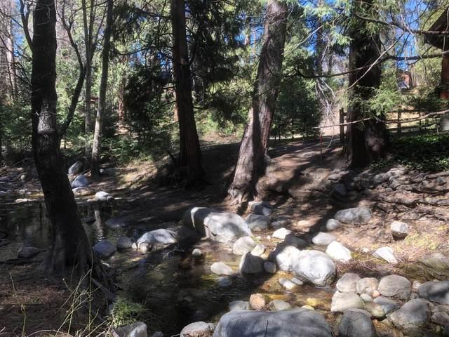 26334 Pine Dell, Idyllwild, CA 92549 (MLS #219068166) :: Lisa Angell