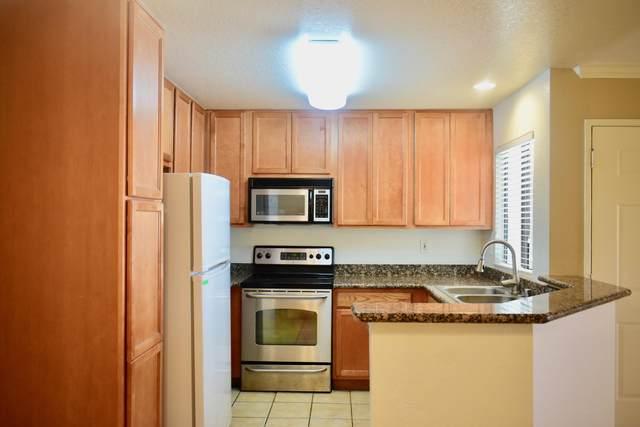 78650 Ave 42, Bermuda Dunes, CA 92203 (MLS #219068420) :: The Jelmberg Team