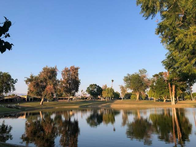 73450 Country Club Drive Drive #162, Palm Desert, CA 92260 (MLS #219069023) :: The Jelmberg Team