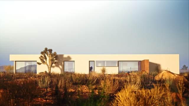 2772 Border Ave Avenue, Joshua Tree, CA 92252 (MLS #219069073) :: Brad Schmett Real Estate Group