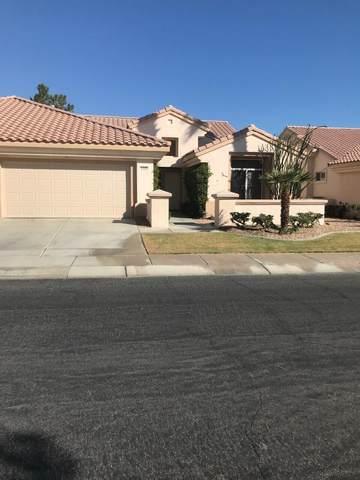 78420 Willowrich Drive, Palm Desert, CA 92211 (MLS #219069079) :: Brad Schmett Real Estate Group