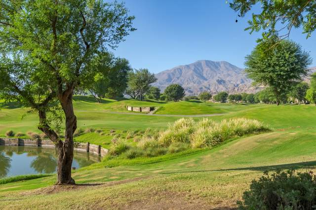 80363 Oak Tree, La Quinta, CA 92253 (MLS #219069179) :: The Sandi Phillips Team