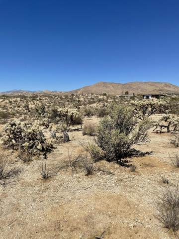 5998 Marvin Drive, Yucca Valley, CA 92284 (#219069252) :: The Pratt Group