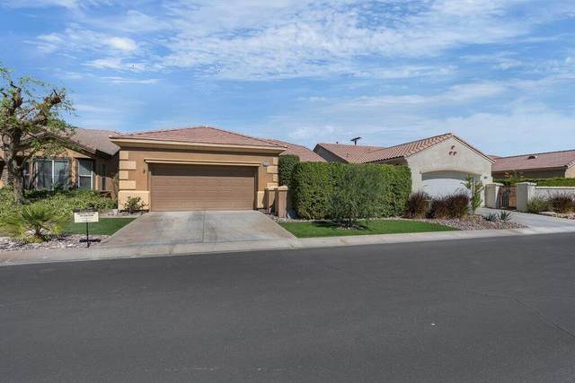 80544 Hoylake Drive, Indio, CA 92201 (MLS #219069303) :: Lisa Angell