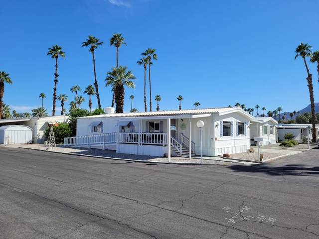 320 Coyote, Cathedral City, CA 92234 (#219069398) :: The Pratt Group