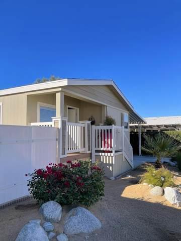 22840 Sterling Avenue #20, Palm Springs, CA 92262 (MLS #219069564) :: Brad Schmett Real Estate Group